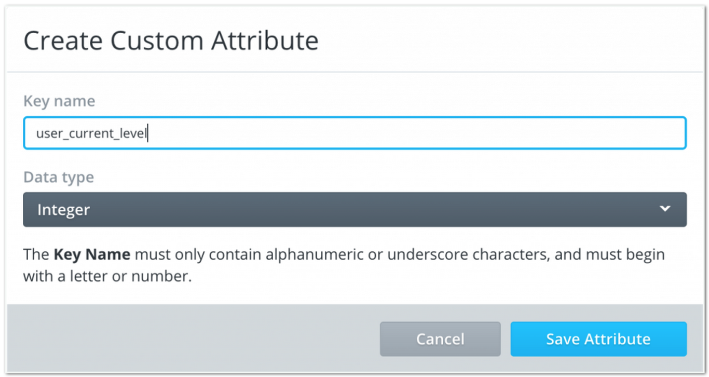 Create Carnival Custom Attribute